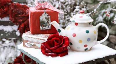 Snowy teapot Lucy Barden Photography